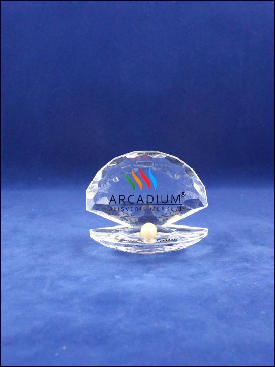 TVL 2004